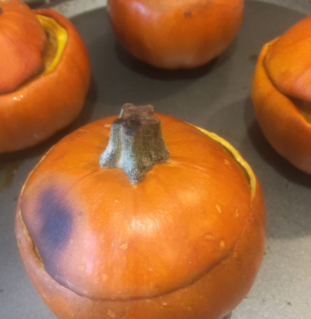 pumpkin pie mini pumpkins with tops